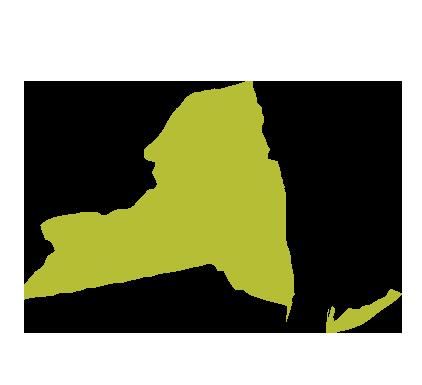 ESRD Network of New York